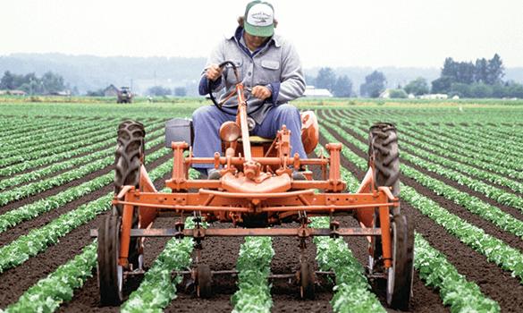EWS-Farmer