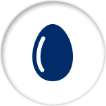 Blue icon of an egg