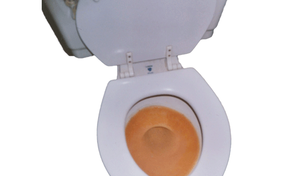 A toilet bowl with reddish, iron-stained water inside